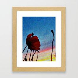 Poppy Sunset Framed Art Print