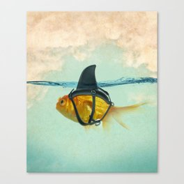 Brilliant DISGUISE - Goldfish with a Shark Fin Canvas Print