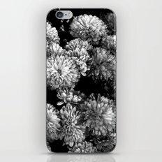 white gold iPhone & iPod Skin