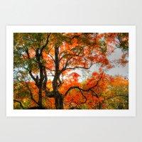 Autumn Colage Art Print