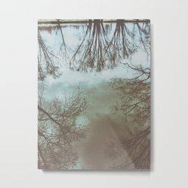 trees in the water Metal Print