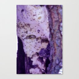 Ghost in the Tree Canvas Print