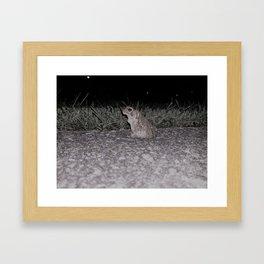 Awe-inspiring Amphibian Framed Art Print