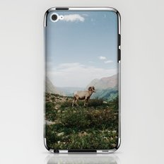 Bighorn Overlook iPhone & iPod Skin