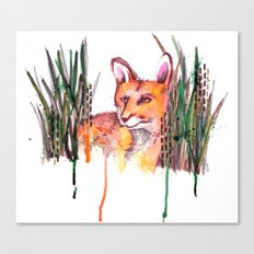 Fox Canvas Print
