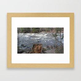 River Banks Framed Art Print
