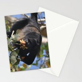 Panama Monkey Island Howler Stationery Cards