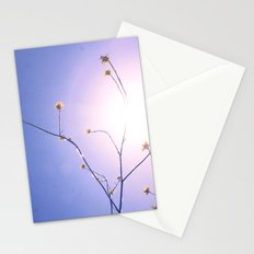 Delicate Things Stationery Cards