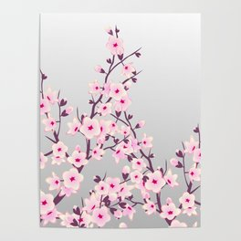 Cherry Blossoms Pink Gray Poster