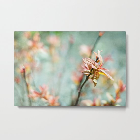 Color Bloom Metal Print