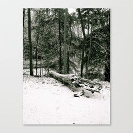 Beautifully Dead Canvas Print