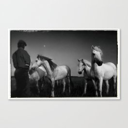 HORSE WHISPERER, FRANCE Canvas Print