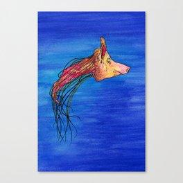 Jellypig Canvas Print