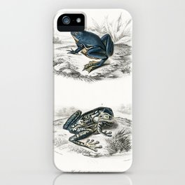 Shrinking frog (Pseudis Merianae) and Black-spotted casque-headed tree (Trachycephalus geographieus) iPhone Case