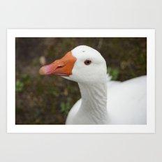 Oh My Goose! Art Print