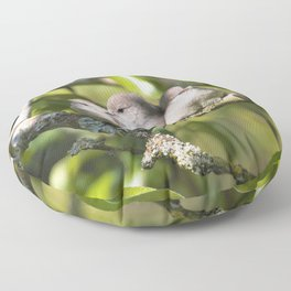 3 Bushtit Songbirds in the Pear Tree Floor Pillow