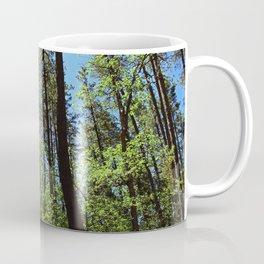 Among the Trees in the Wood Coffee Mug