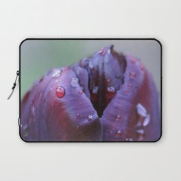 homage Laptop Sleeve