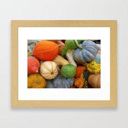 Autumn Gourds Framed Art Print