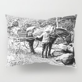 Vintage Adirondacks: The Roadside Watering Trough Pillow Sham