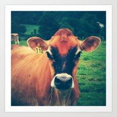Cow 110 Art Print
