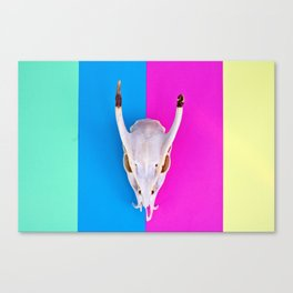 Deer Skull on Striped Background Canvas Print