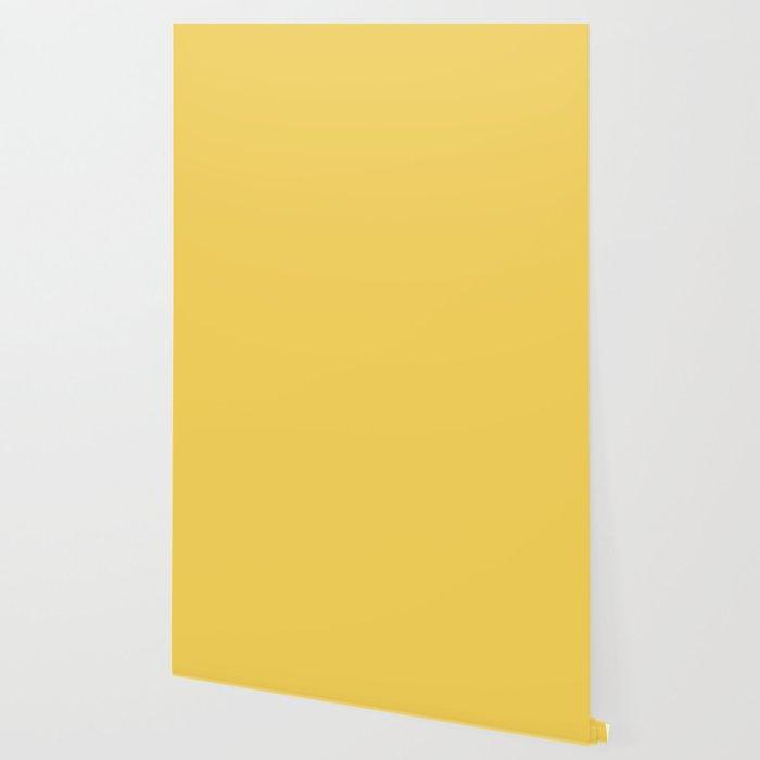 Spring 2017 Designer Colors Primrose Yellow Wallpaper