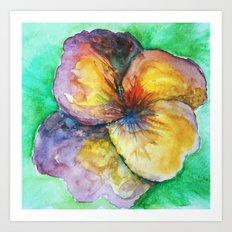 watercolor pansy Art Print