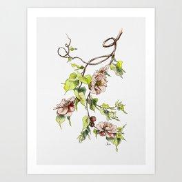 Camellia Inspired Flower Branch Art Print