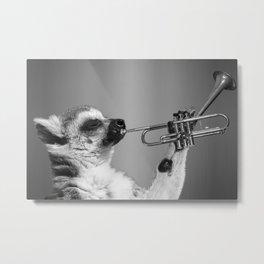 pet blowing the trumpet Metal Print