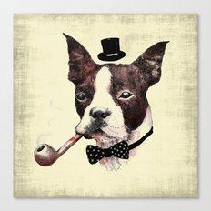 Mr. Bulldog Canvas Print