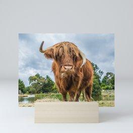 Scottish Highland Cow Mini Art Print