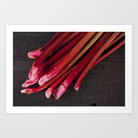 Rhubarb Art Print
