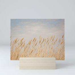 Gold Coast - Sea Oats on Chesapeake Bay Mini Art Print