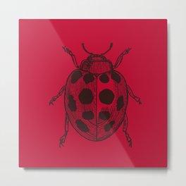 Lady Bug - Red Metal Print