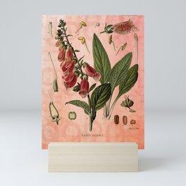 Vintage Botanical Illustration Collage, Foxgloves, Digitalis Purpurea Mini Art Print