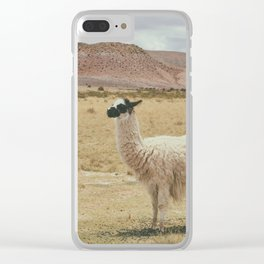 South American landscape Clear iPhone Case