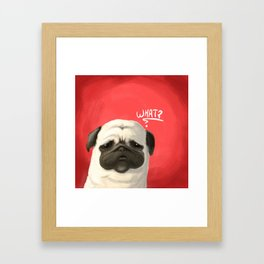 Pug of the day - What ? Framed Art Print