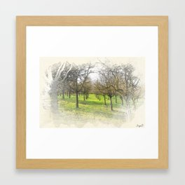 watercolor trees Framed Art Print