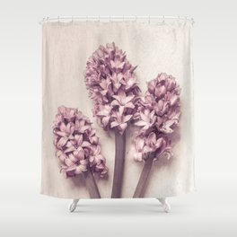 Three Pink Hyacinths Shower Curtain