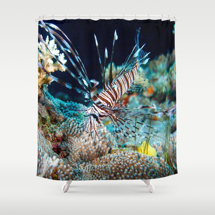Lionfish On The Great Barrier Reef Shower Curtain