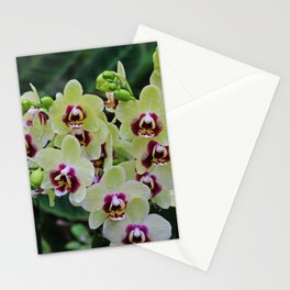 Hypnotic Vibes Stationery Cards
