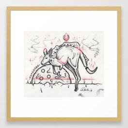 Kangaroo Framed Art Print