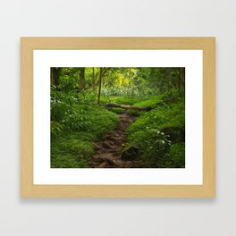 Forest Haven in Iao Valley Framed Art Print