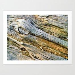 Jersey Wind II Art Print
