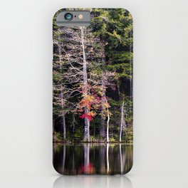 edge of the lake iPhone Case