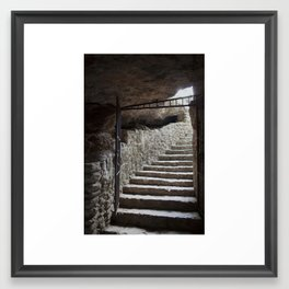 Cenote Stairs Framed Art Print