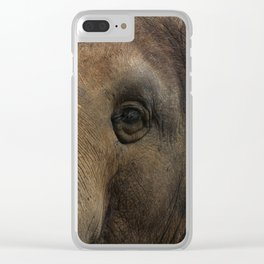 Elephant closeup Clear iPhone Case