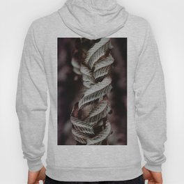 Intertwined Hoody