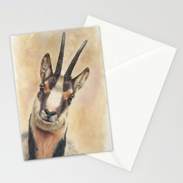 chamois Stationery Cards